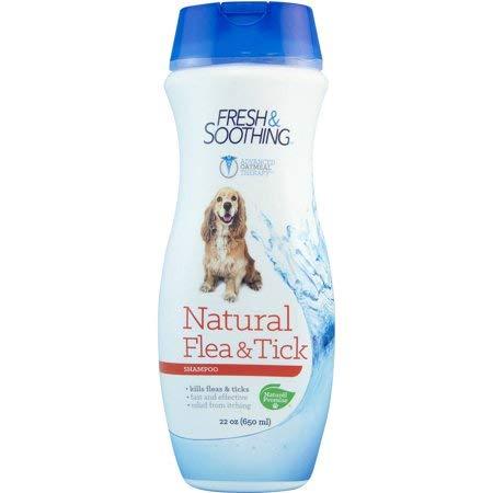 naturel shampoo